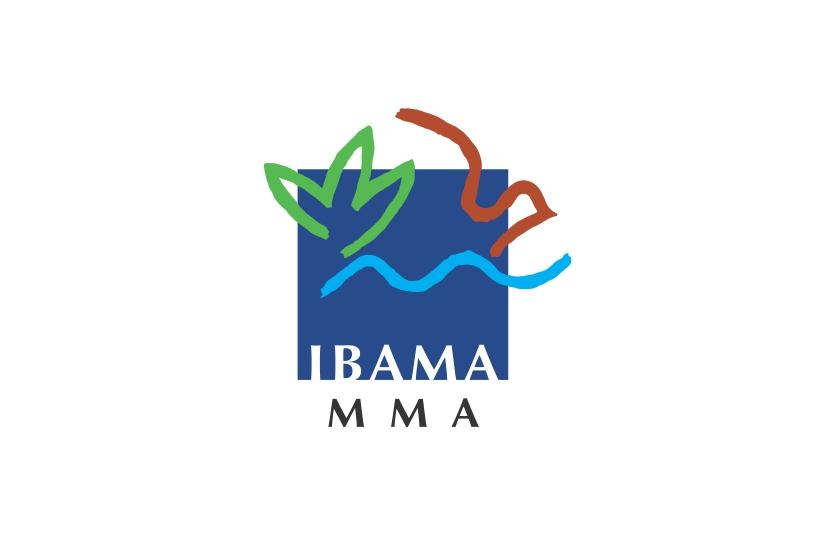 Ibama publica Instruções Normativas para reduzir a importação e intensificar o controle de substâncias nocivas à camada de ozônio